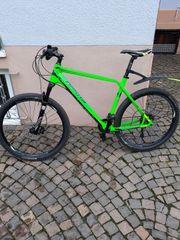 Mountine- Carbon-Bike Typ Natika