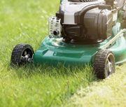 Gartenhelfer Gartenpflege Minijob Nebenjob Aushilfe