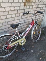 26er Damen- bzw Jugendrad VORTEX
