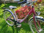 24 Zoll Alu Jugendfahrrad Fahrrad