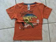 Shirt halbarm 2 Stück Gr