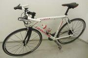 Rennrad für Freizeit-Profis