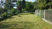 KELSTERBACH Gartengrundstück 350m2 zu verpachten