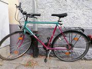 Fahrrad Studentenfahrrad 28 Zoll