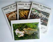Sammlung von 1200 exzelenten Pilzbildern