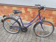 Damenfahrrad Frauenfahrrad Capriolo violett 26