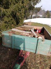 Fichten-Brennholz