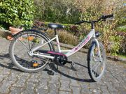 Fahrrad Pegasus Arcona 24 Zoll