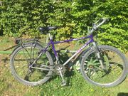 26 UNIVEGA Mountain Bike 21