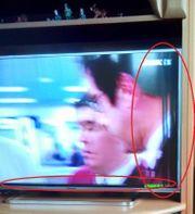 Panasonic TV TX40DSW504S Display Schaden