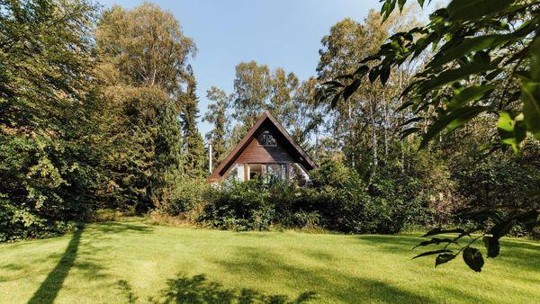 Ferienhaus Wald Kamin Alleinlage Heide