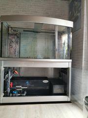 leeres Meerwasser Aquarium 1 35x70x70