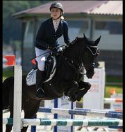 Ausbildung von Pony und Pferden