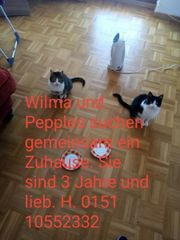 Wilma und Pepples