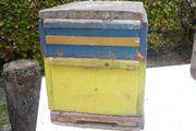 zu Verschenken Bienenbeuten Zander und