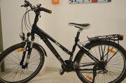 Mountainbike TREK für Kinder Jugendliche