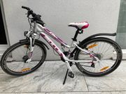 Fahrrad Kinderfahrrad BULLS
