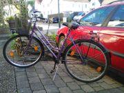 Damenfahrrad Damencityrad Cityrad 28 Zoll