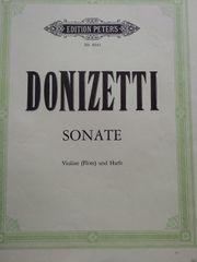 Orgel Donizetti Sonate Violine Flöte