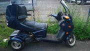 Palmo T150 Trike Roller PKW-Führerschein