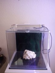 Meerwasseraquarium Komplettset Dupla Marin Cube