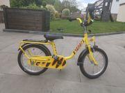 Pucky Fahrrad 16 Zoll Tigerenten-Design