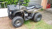MZ Bison MT175H - - Motortek MT175H - -