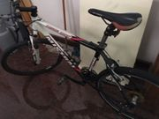 Mistral Mountainbike Force