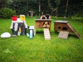 Nagerzubehör abzugeben: Kleinanzeigen aus Puchheim - Rubrik Zubehör für Haustiere