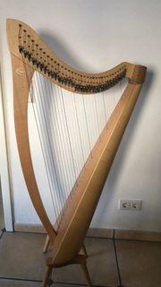 Salvi Harfe Neupreis 2400EUR