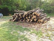 Eichen Brennholz