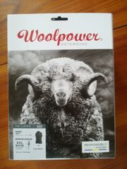 Woolpower Weste 400 grau XXL