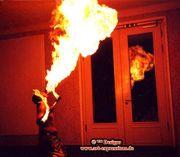 Feuershow Feuerspucker Feuerschlucker FIRE TWISTER