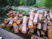 Brennholz zum abholen ca 4