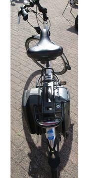 Pedelec Fahrrad E-Bike Giant Twist