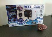 Livestreaming Unterwasserkamera für Aquarien
