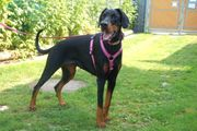 Chica Lina 1 Jahr 6 Monate
