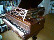 Historischer Pleyel Flügel Piano 1850