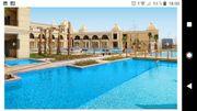 Reisepartnerin Ägypten im Dezember