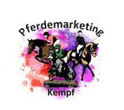 Kommissionsvermarktung für Freizeitpferde und Ponys