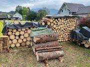 Brennholz - gute Qualität - gutes Angebot
