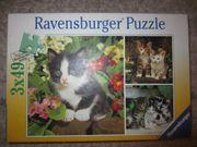 Katzen Puzzle mit je 49