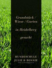 Wiese Garten Grundstück in Heidelberg
