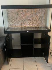 Juwel Aquarium ca 450 L