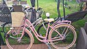 Damen Fahrrad Rosa 26 Zoll