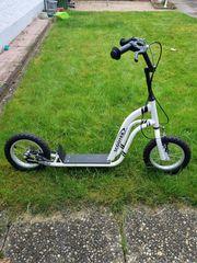 Roller Scooter neuwertig