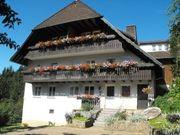 Ferienwohnung im Schwarzwald ruhige sonnige