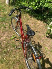 Damen Treking Fahrrad Gröse S
