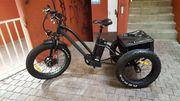 E-Bike Fat-Bike Trike