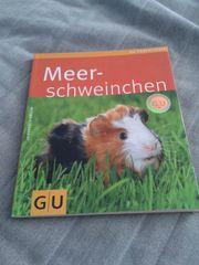 Meerschweinchenbuch